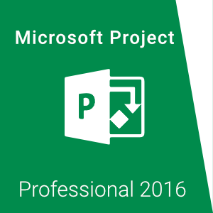 MS Project Pro 2016