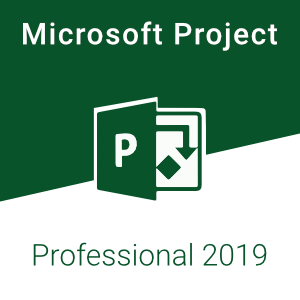 MS Project Pro 2019